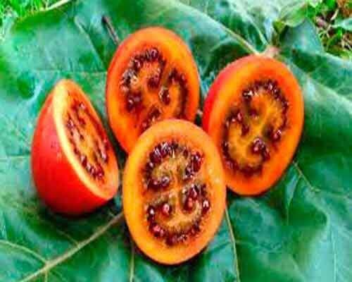 4 eksoottista hedelmää ja vihannesta, joita et luultavasti ole nähnyt