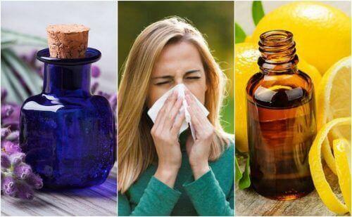 6 eteeristä öljyä allergiaoireiden hillitsemiseen