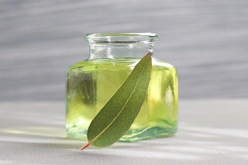 eukalyptusöljy 6 eteeristä öljyä