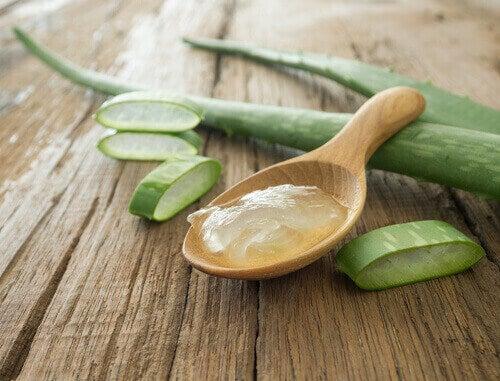Aloe vera tehostaa glutationin tuotantoa.