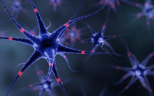 Häiriö makuaistien hermoalueella voi aiheuttaa metallisen maun suuhun.