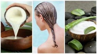 Hiushoito hiustenlähtöä vastaan: Aloe veraa ja kookosmaitoa