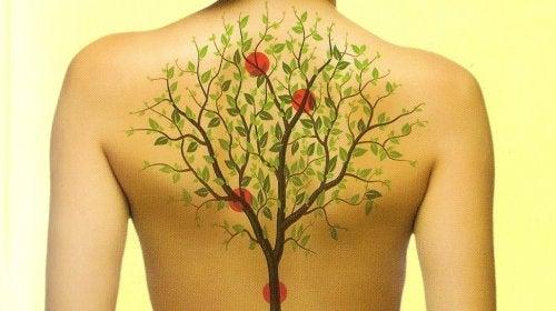Kuinka tunteet vaikuttavat kehosi eri elimiin?