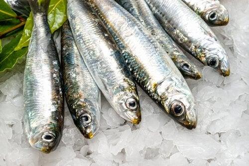 kala on rasvaa polttavaa ruokaa