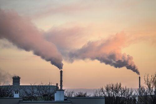 saasteet