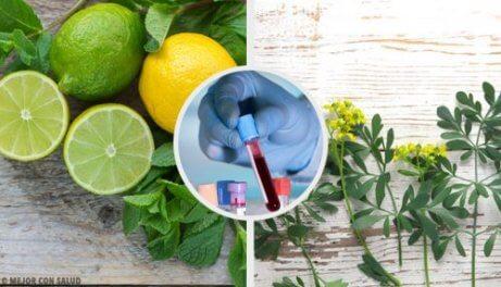 Carrulim: luontaishoito tuoksuruudasta ja sitruunasta