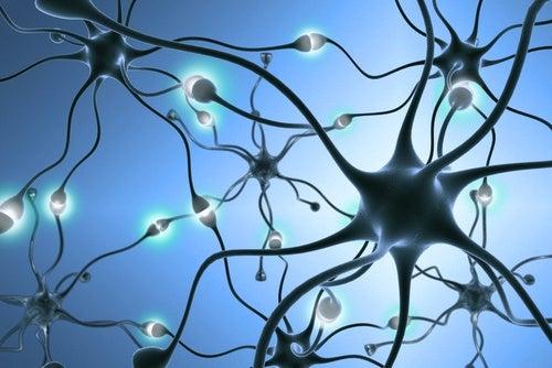 serotoniinin puutteesta johtuvan masennuksen hoito hermopäätteet