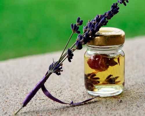laventeli eteerinen öljy purkissa