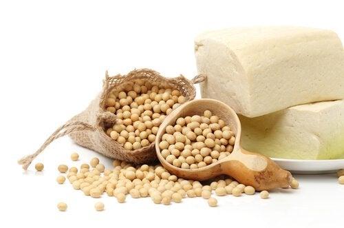 soija ja proteiini
