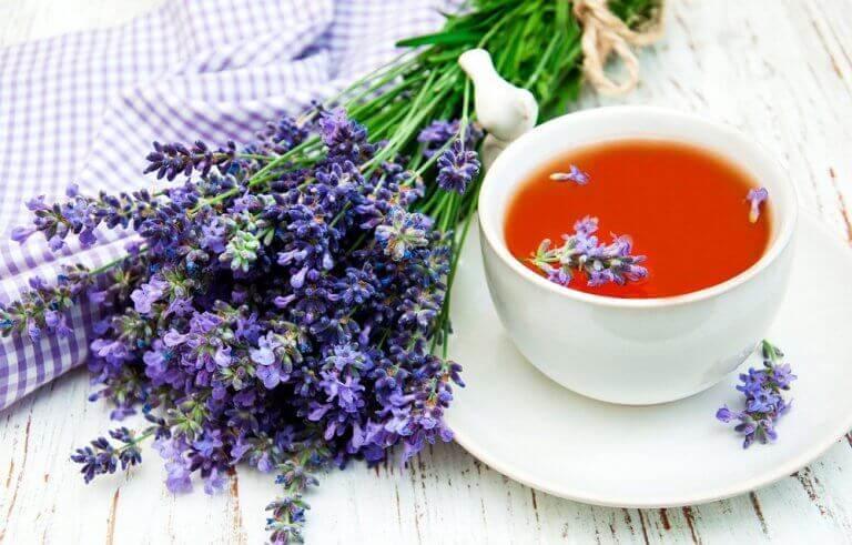 luonnolliset apukeinot unen saamiseksi: laventeli