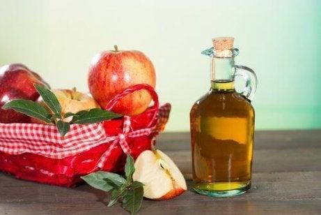 Kirppujen torjuntaan voit käyttää omenaviinietikkaa.