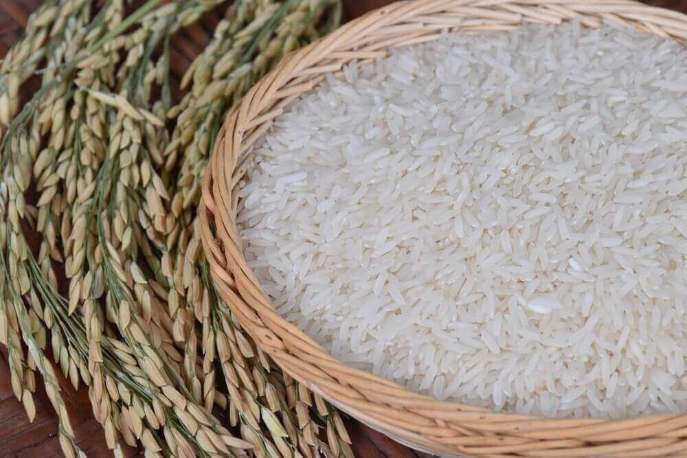 valkoista riisiä