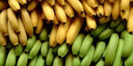 3 eroa banaanien ja keittobanaanien ravinteissa