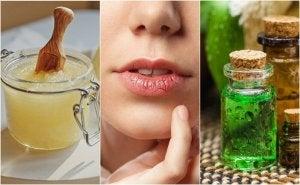 hoida halkeilevia huulia luonnollisilla tuotteilla