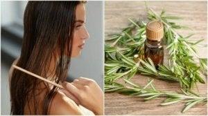 rosmariinin hyötyä hiuksille