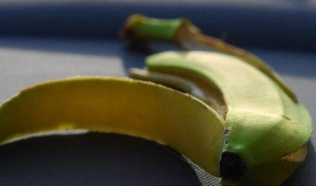 banaanit ja keittobanaanit: niiden erot