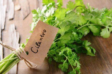 7 korianterin loistavaa terveyshyötyä