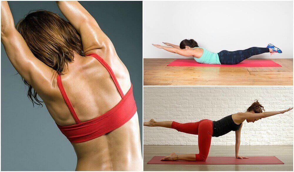 5 selkäharjoitusta ilman painoja