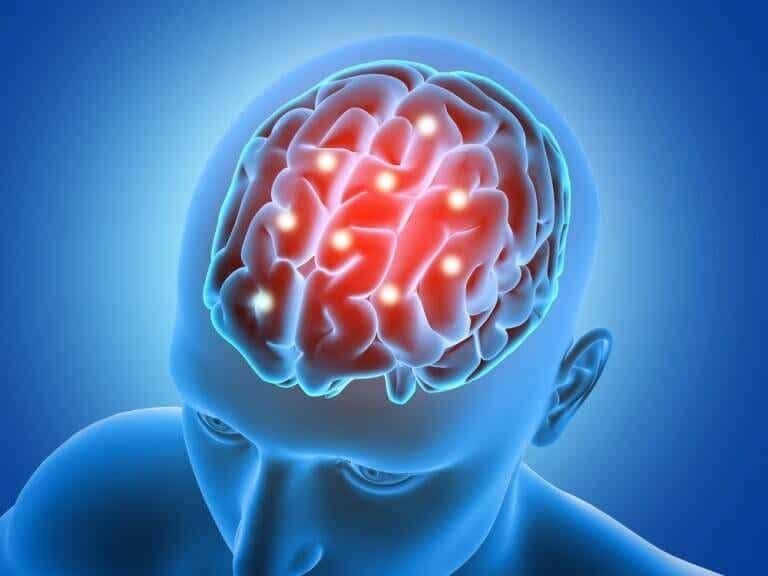 5 aivoja aktivoivaa ravinnetta