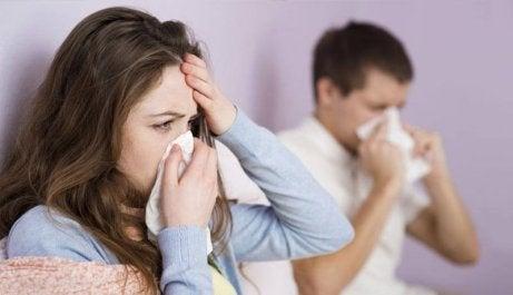 torju flunssaa korianterilla