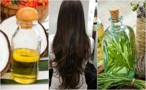 stimuloi hiusten kasvua kookosöljyllä ja rosmariiniöljyllä