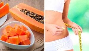 papaija ja painonpudotus