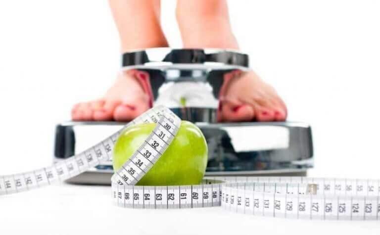 7 syytä syödä vihreä omena tyhjään vatsaan - auttaa painonpudotuksessa.