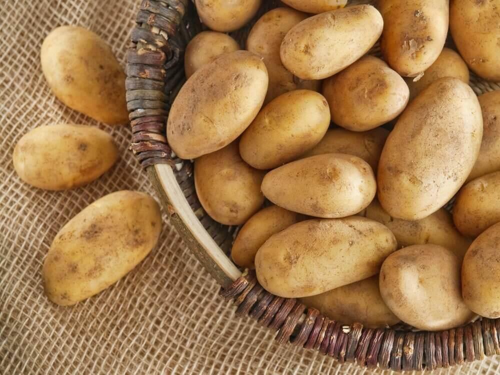 peräpukamia voidaan hoitaa perunalla