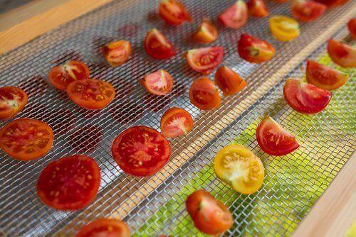 tomaattien kuivaus