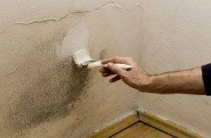 mies maalaa homeseinää