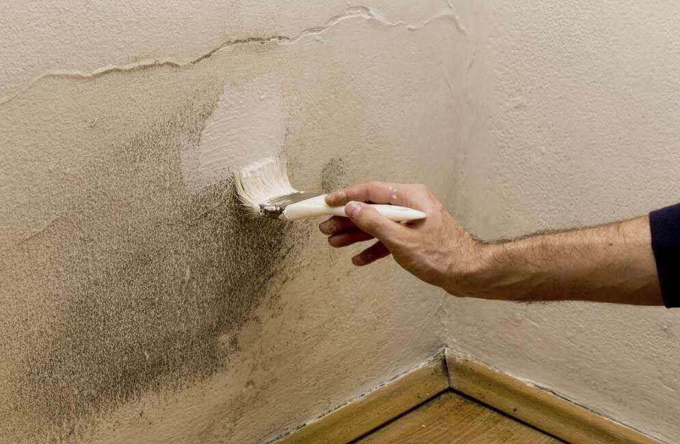 5 tapaa päästä eroon kosteudesta kodissa