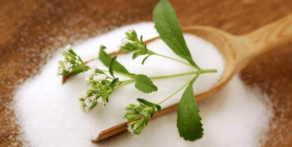 valmista steviasta hauduketta diabetekseen