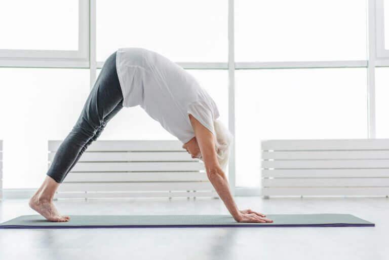 jos haluat ikääntyä hyvässä kunnossa, harrasta liikuntaa