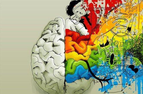 toinen puoli aivoista on värillinen