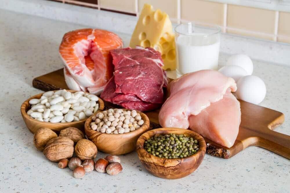 Proteiinit ovat lihaksen rakennusaineita.