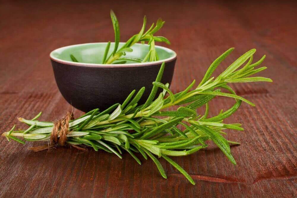 luonnolliset lihasrelaksantit: rosmariini