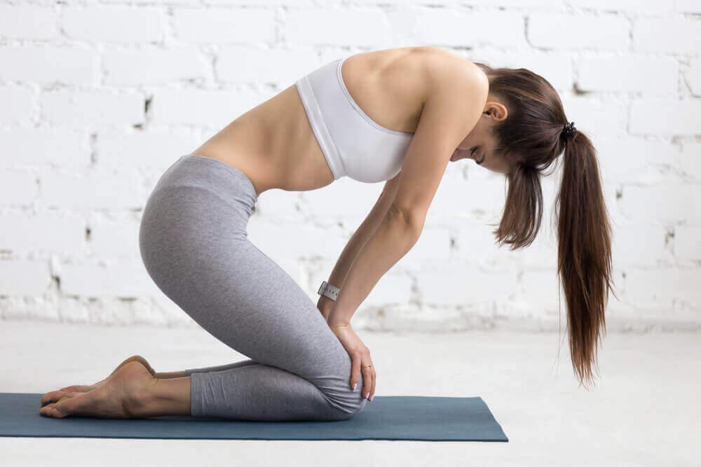 vatsalihasten erkauma: harjoitukset