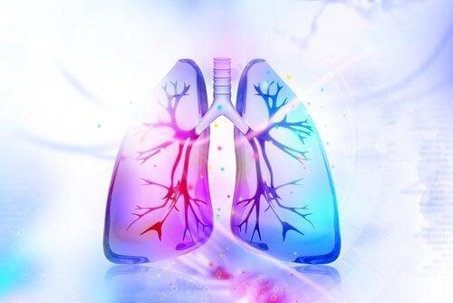 Keuhkojen puhdistaminen luontaishoidoilla