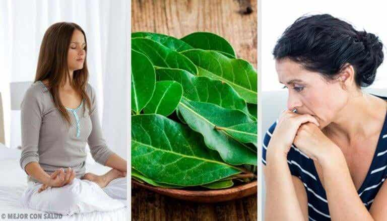 7 laakerinlehden terveyttä edistävää ominaisuutta