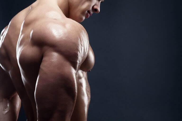 Lisää lihasmassaa herkullisilla aamiaisilla