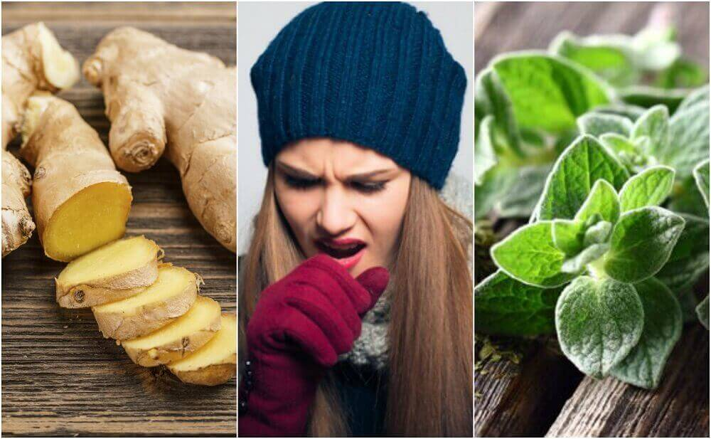5 limaa irrottavaa luontaishoitoa kasveista