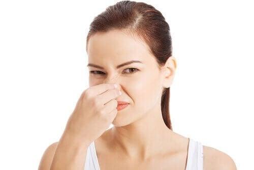 Poista pahoja hajuja pienistä tiloista näillä kahdella aineella