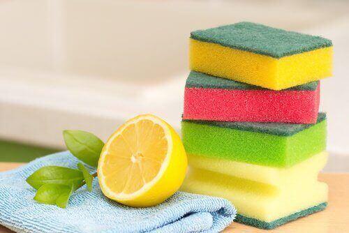 täydellinen keittiö: puhtaat pesusienet