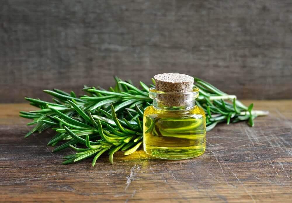 Rosmariinin uskomattomat käyttötavat ja hyödyt