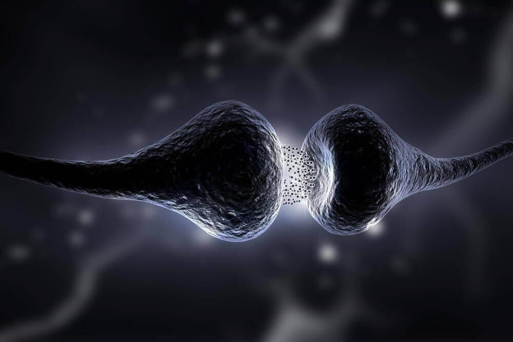 Serotoniinidieetti: mikä se on ja mitä hyötyä siitä on