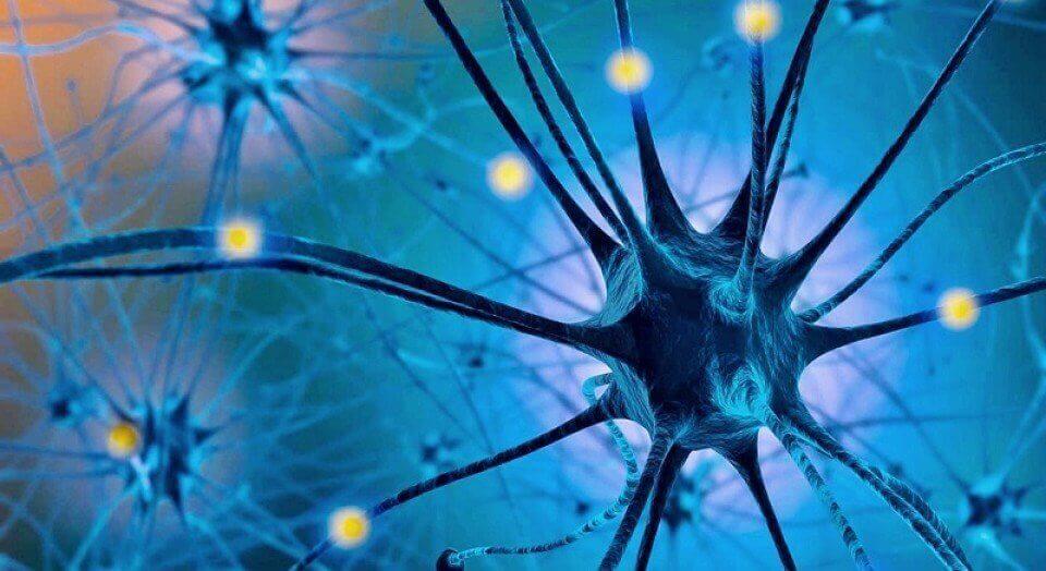 Serotoniinidieetti auttaa hillitsemään makeanhimoa.