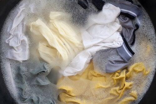 vaatteiden ja rättien pesu