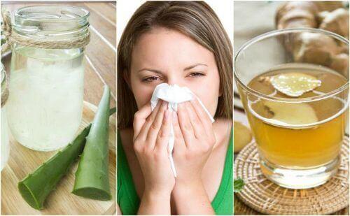 5 luontaishoitoa allergiseen nuhaan