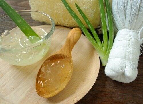 koita luontaishoitoa rakkuloihin: aloe vera