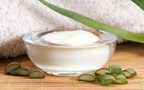 Aloe vera auttaa ihon kosteuttamisessa.